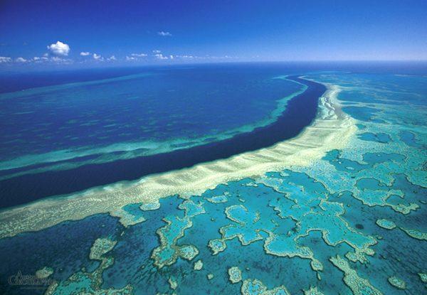 Коралловое море Австралии и его сюрпризы.