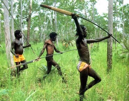 http://www.avstralianature.ru/img/pages/Проблемы экологии - виноваты аборигены?