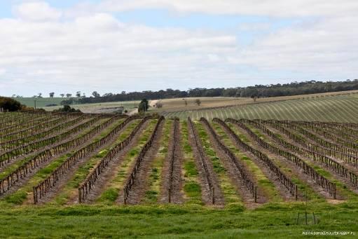 http://www.avstralianature.ru/img/pages/Плодородные почвы Австралии