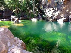 http://www.avstralianature.ru/img/pages/Национальный парк Какаду