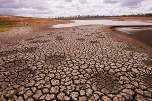 http://www.avstralianature.ru/img/pages/Экологические проблемы Австралии решаться не будут